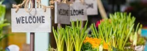 welcome signs with planted onions and vegetables. welcome to single ingredient groceries